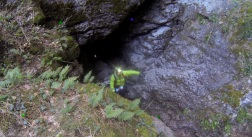 grotte st firmin 2